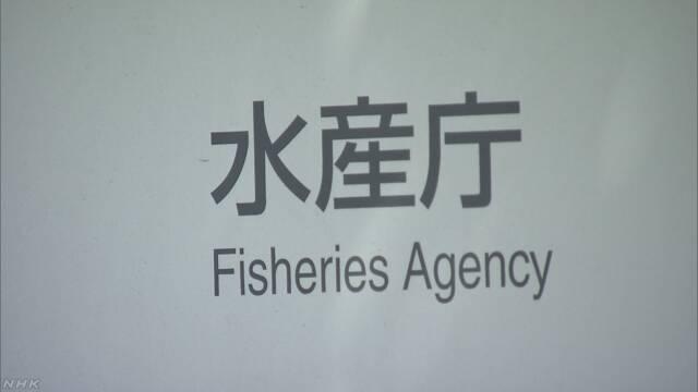 【速報】北朝鮮漁船と水産庁漁業取締船が衝突か 北朝鮮船の乗組員が漂流 能登半島沖(11:19)