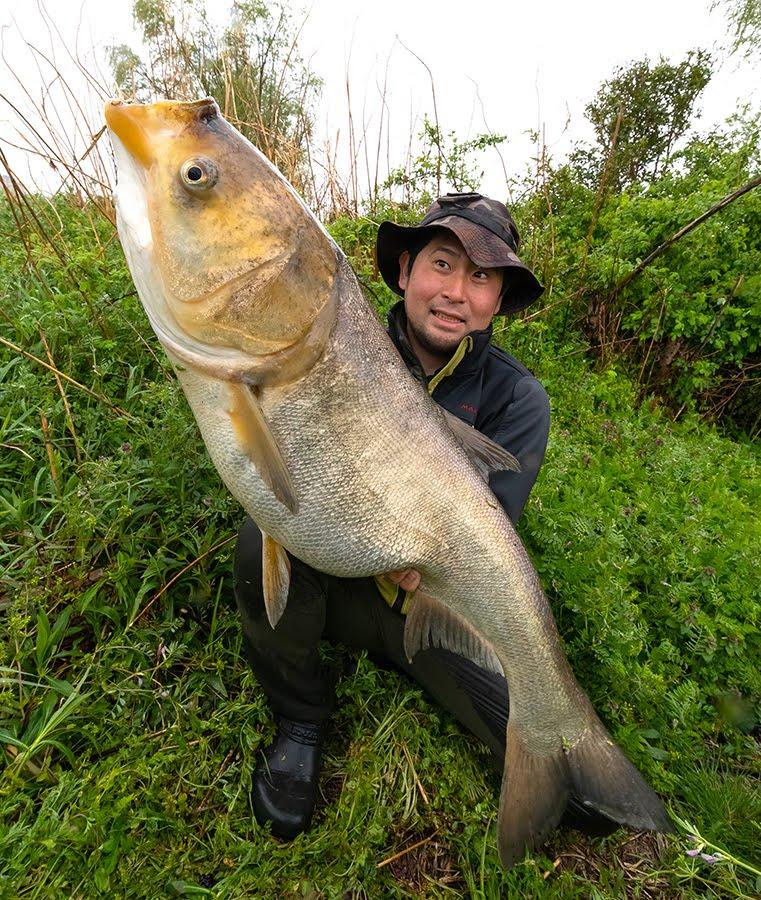 陽キャ「利根川でめっちゃでかい魚釣れたw」パシャッ