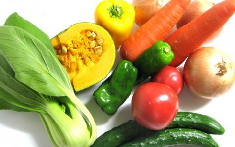 「有能な野菜TOP10」 に確実に入ってるやろwって野菜